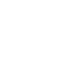AAA Transport Solutions